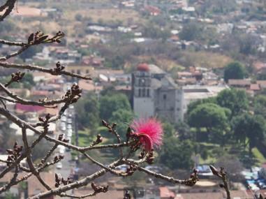 Blick von oben auf das Dorf -- Foto: Antje König